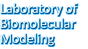 Laboratory of Biomolecular Modeling